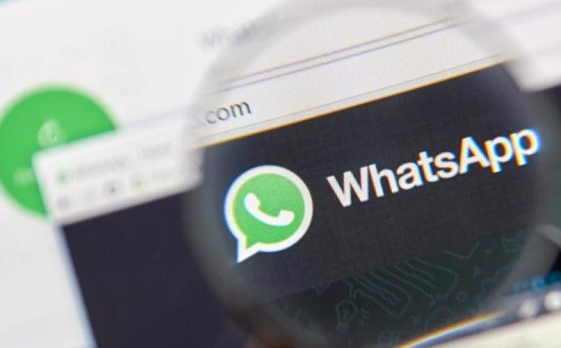 1589598647 This is how the WhatsApp bot to deny hoaxes about