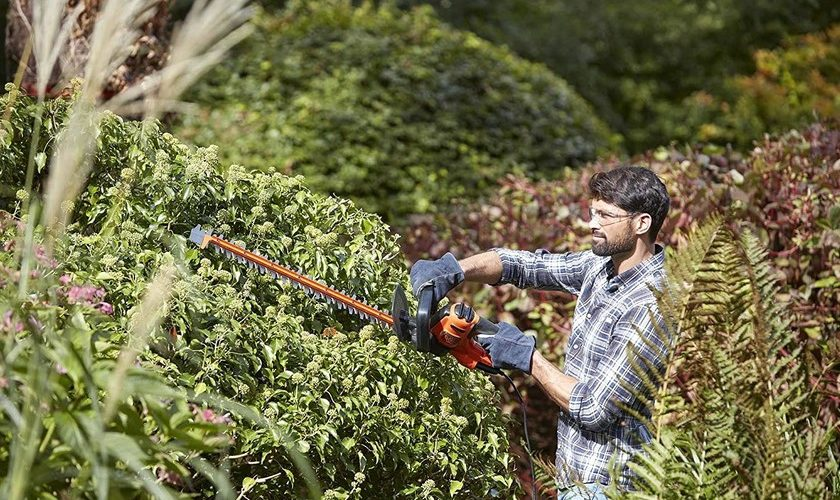 1593489600 chainsaws pruning shears or low pressure washers