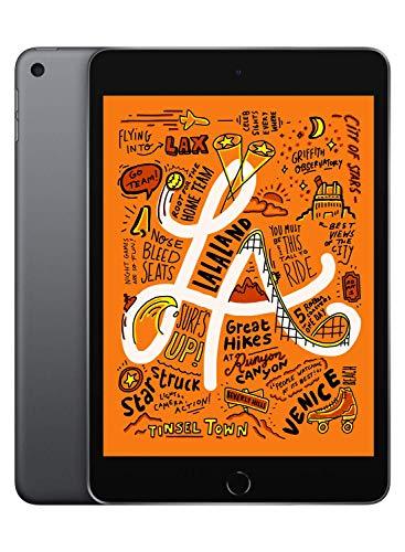 Apple iPad mini (with WiFi, 64 GB), Space Grey (Latest Model)