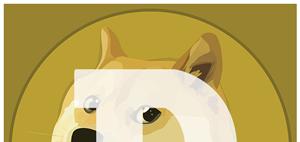 Dogecoin, Litecoin ... do alternatives to Bitcoin make sense?
