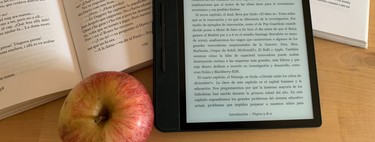 Which ebook to buy: eBook buying guide with recommendations and 13 featured models