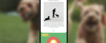 1624690791 With this app you can educate and train your dog