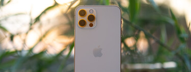 """iPhone 12 Pro, analysis: a """"Pro"""" with some """"but"""""""