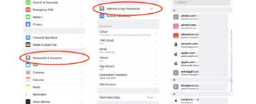 How can I view saved passwords on my iPhone?