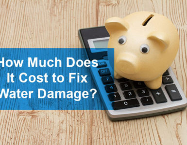 How much does it cost to fix an iPhone water damage?