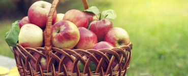 Which apple is the healthiest?